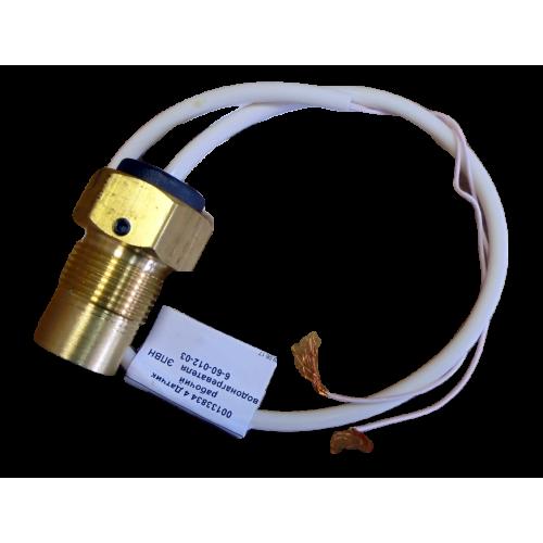 Датчик рабочий водонагревателя ЭПВН 6-60-012-03
